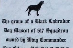 Black Labrador memorial