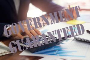 Government-guaranteed loans